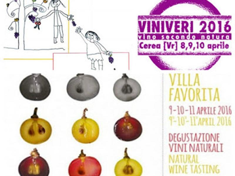 Viniveri