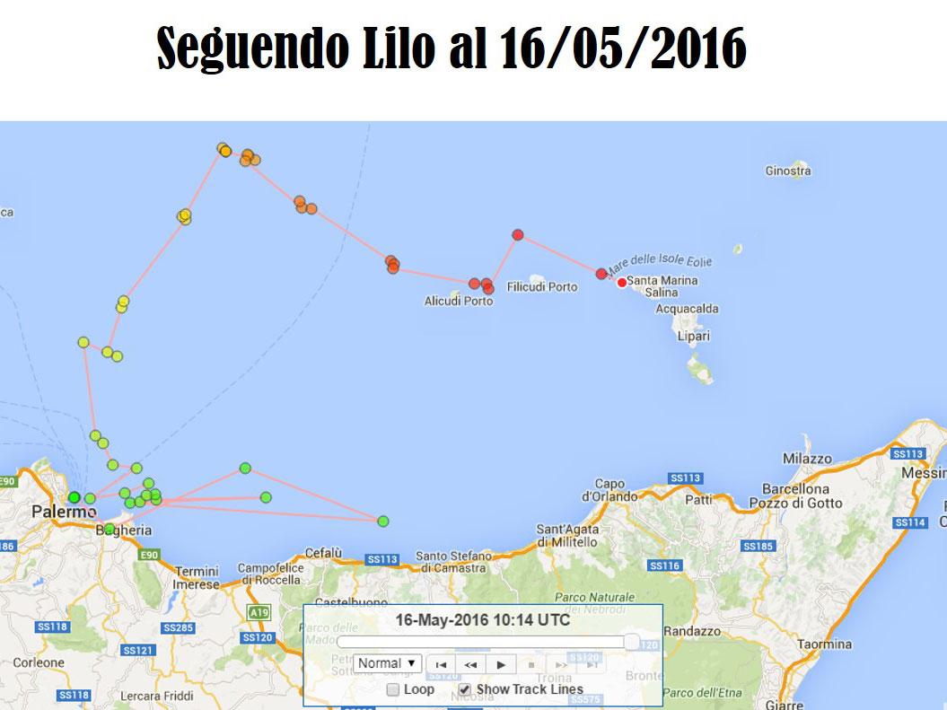 Lilo-16.5.16