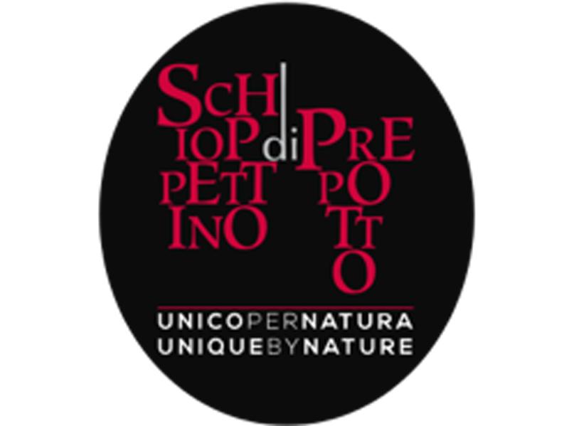 Appuntamento-a-Prepotto-logo-copertina