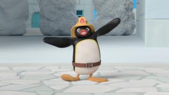 Pingu city - 1
